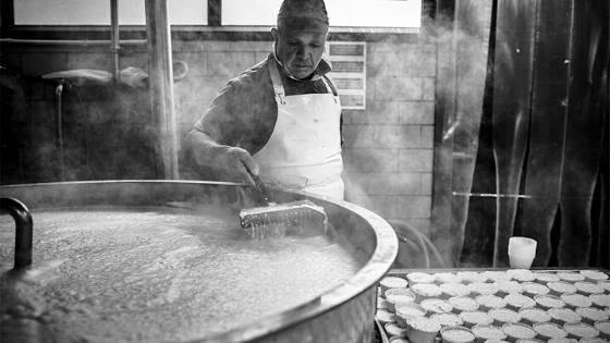 Mozzarella de Bufala