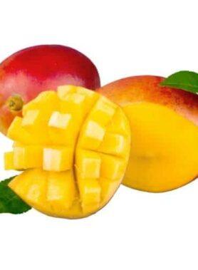 Mangue Extra
