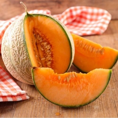 Melon Français