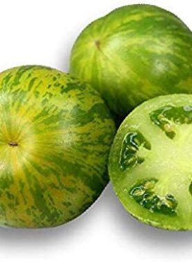 Tomate ancienne : Green Zebra