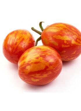 Tomate ancienne : Red Zebra